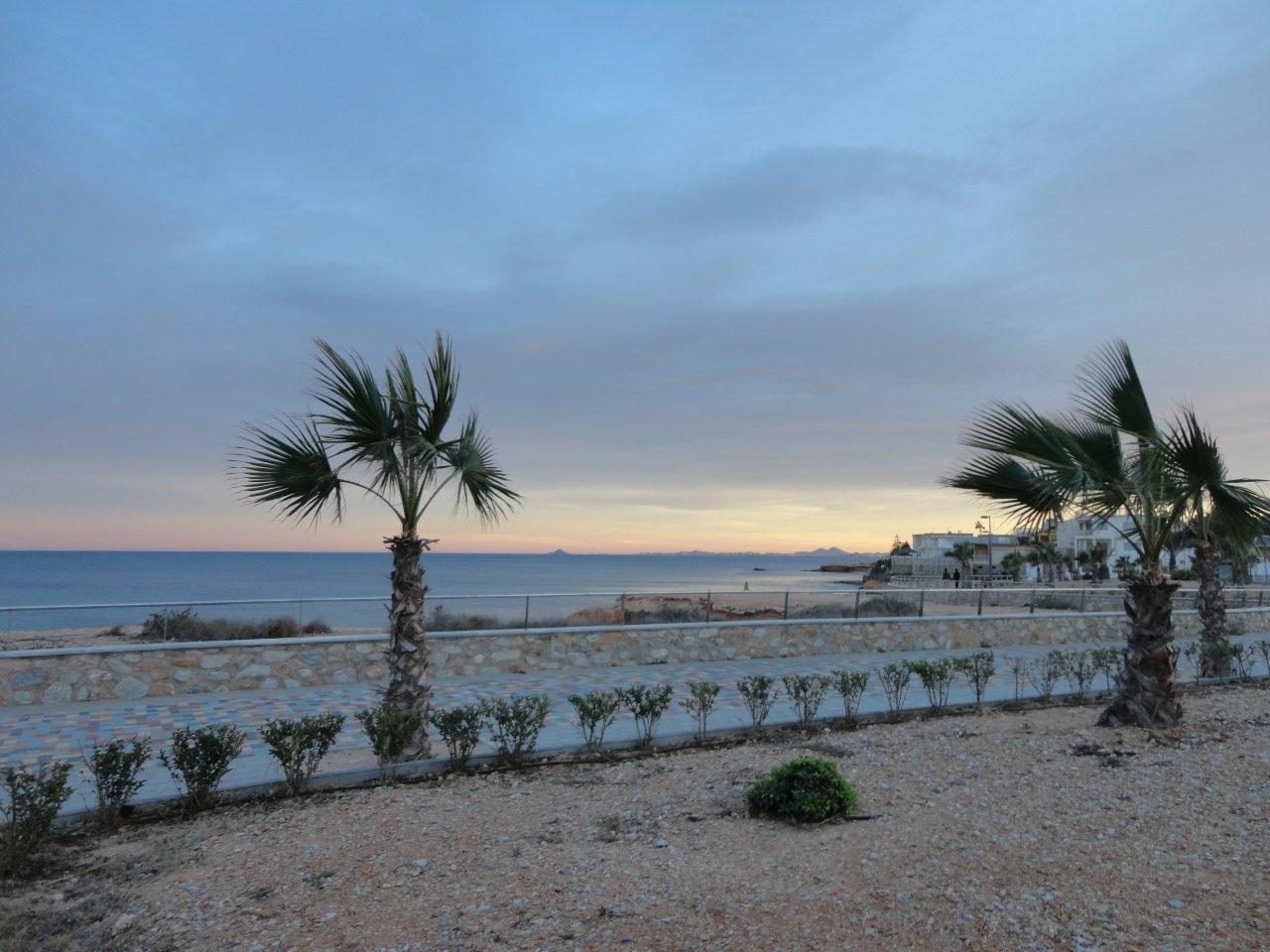 Mil palmeras costa blanca espagne enjoy your stay - La contemporaine residence de plage las palmeras ...